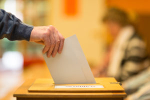 Direct Ballot Initiatives