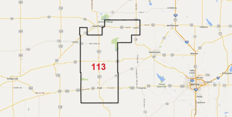 Kansas State Representative 113th District